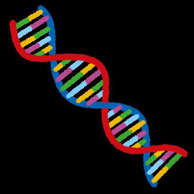 難聴と遺伝について